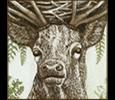 Myth gallery icon