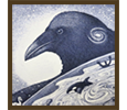 Birds gallery icon