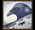 Birds gallery icon